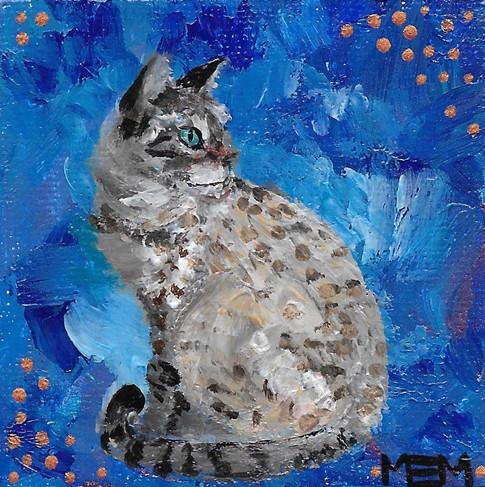 Cat in Blue