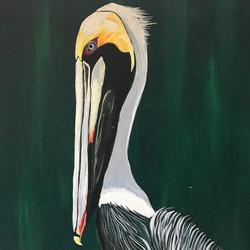 Acrylic Pelican