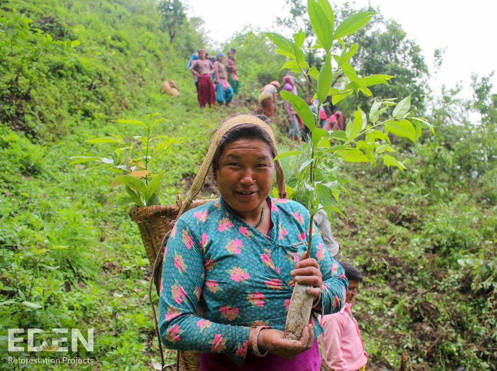 Nepal_2018_Nawalparasi_Nursery director