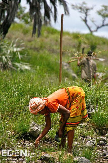 girl planting.jpg