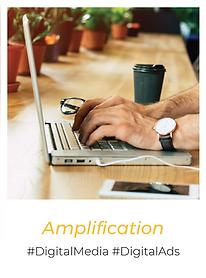 pola - amplification 2_Plan de travail 1
