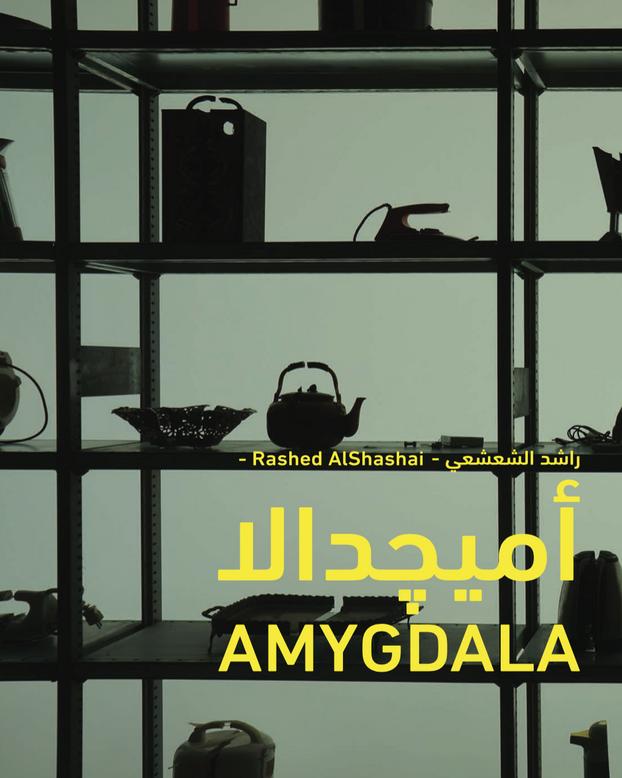 Amygdala - Rashed AlShashai