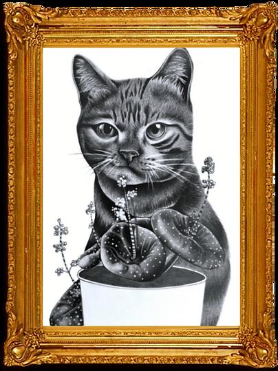 Arte felina emoldurada.png
