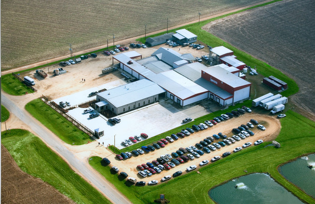 Simmons Farm Raised Catfish