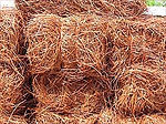 Longleaf Red Pine Straw