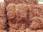 Longleaf Red Pine Straw