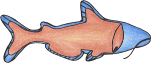 Whole Fish With Fins