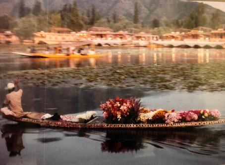 Jewels Of Kashmir