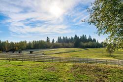 Equidae Farm