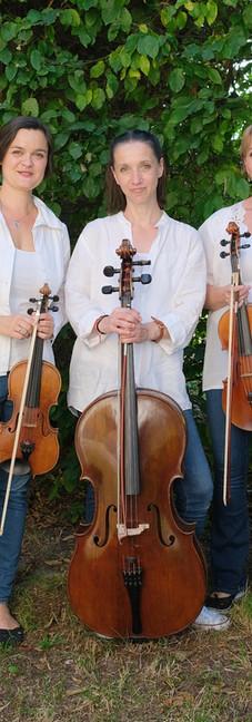 Trio 10