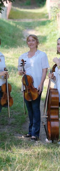Trio 11
