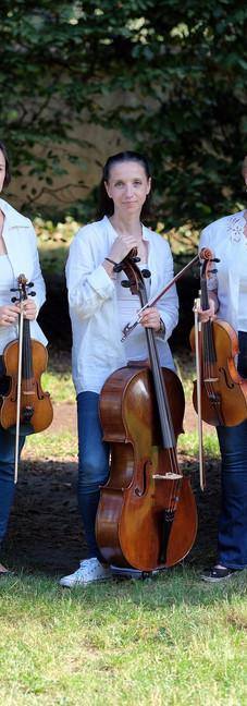 Trio 13