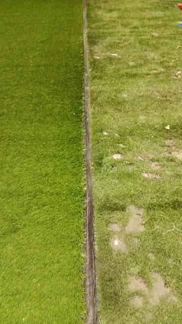 turf/distressed turf