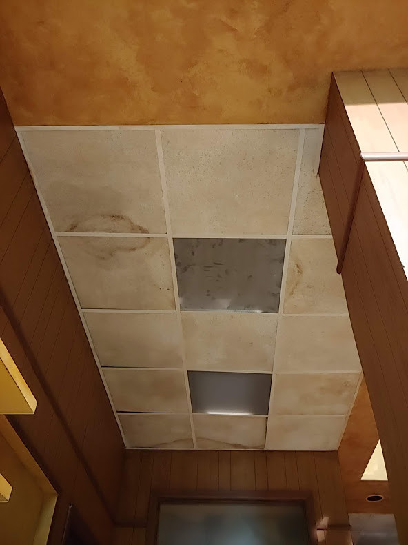 Drop Down Ceiling