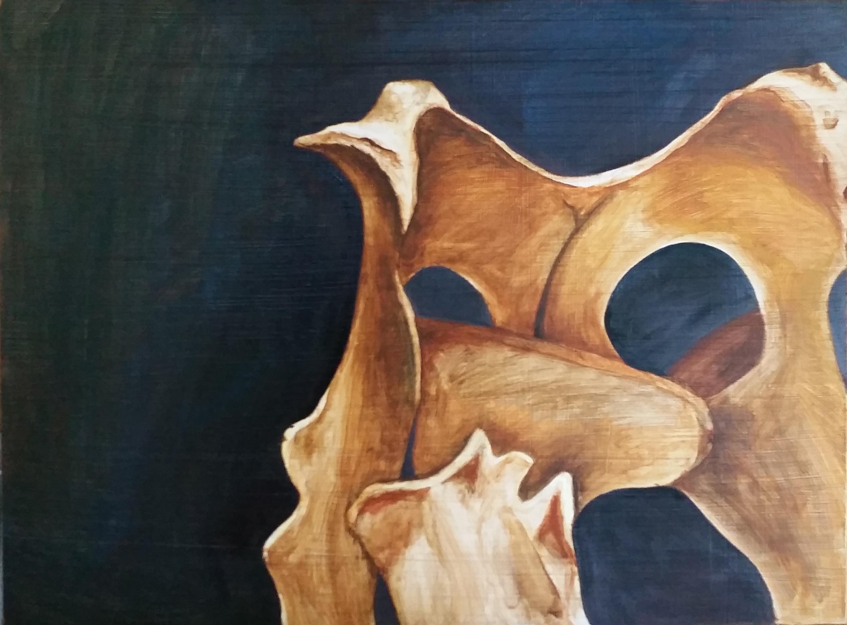 Bone Still Life