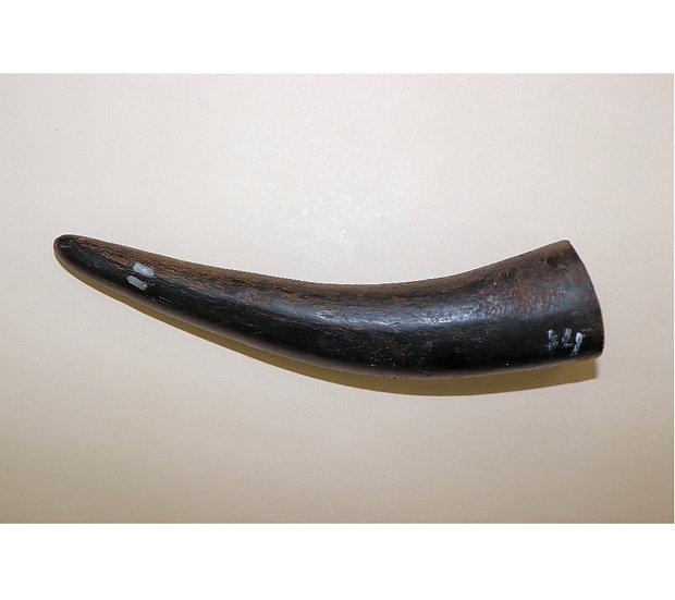 Рогбуйвола,чёрныйB0014