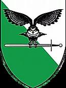 logo combat.webp