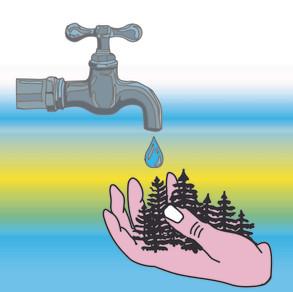 Water loss