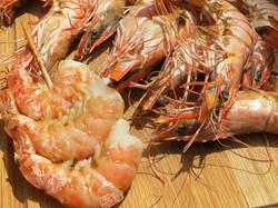 Seafood-Blogbeitrag-skaliert
