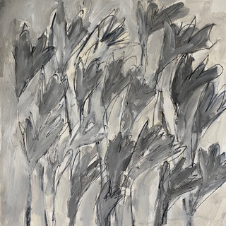 Flowers Series 9