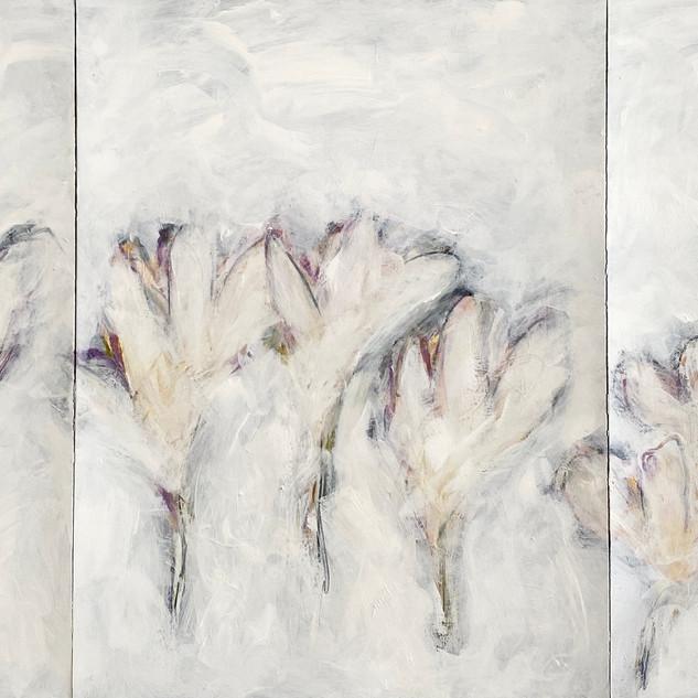 Flowers 40