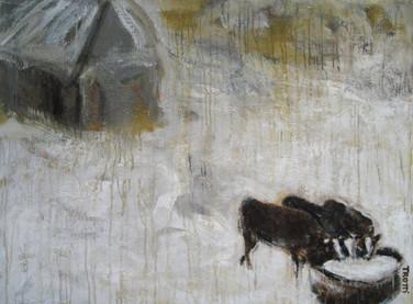 Cows at the barn