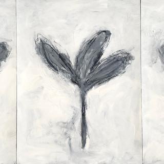 Flowers B&W 44