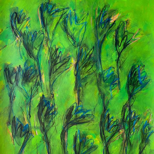 Flowers Series 18