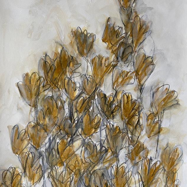 Flowers Series 11