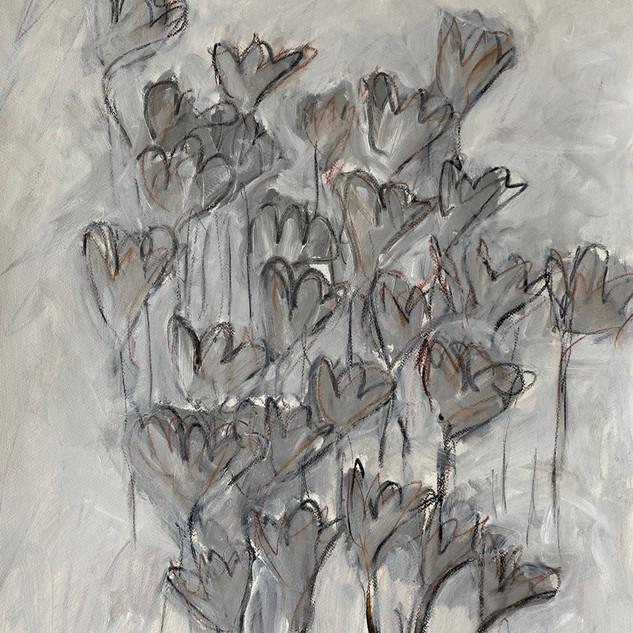 Flowers Series 7