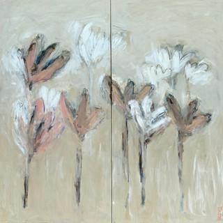 Flowers series 38