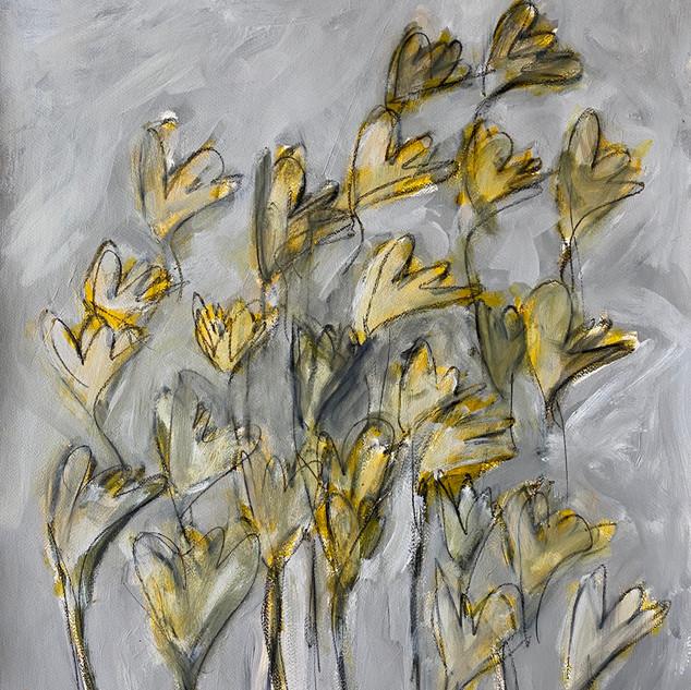 Flowers Series 10