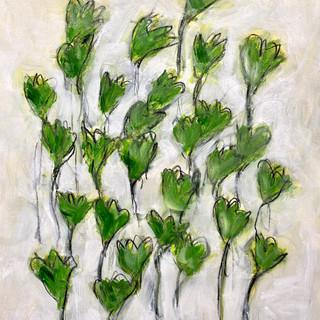 Flowers Series 30