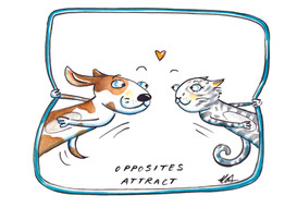 8 Opposites Attract Card white copy.jpg