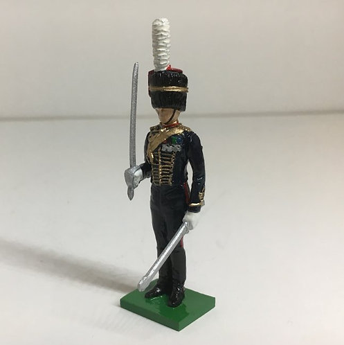 Fig 172 - Kings Troop RHA Officer standing
