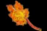 Fallig Leaves Logo