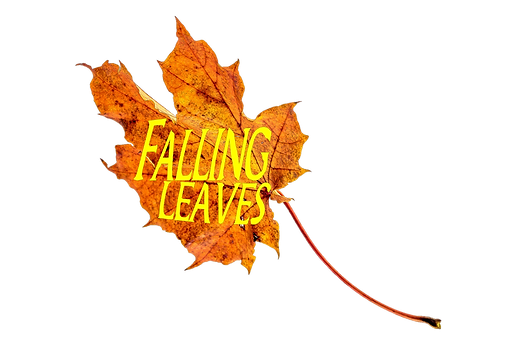 Fallig Leaves Logo