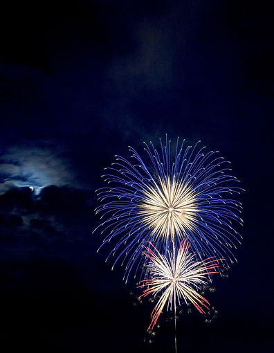blue-and-red-brocade-fireworks-at-night-