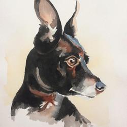 Gomez/Watercolor