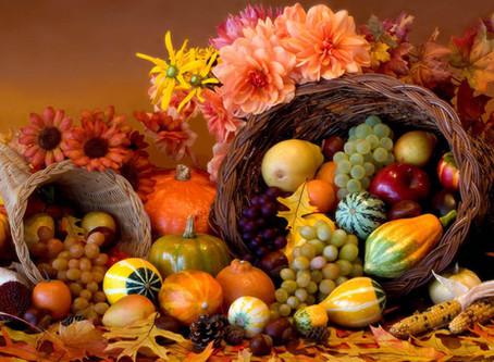 La Cure d'automne ou comment bien préparer son Hiver !!
