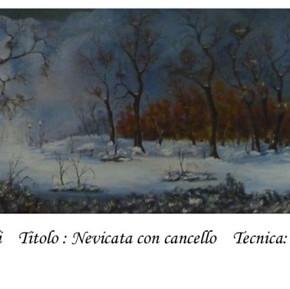 2.nevicata_con_cancello.jpg