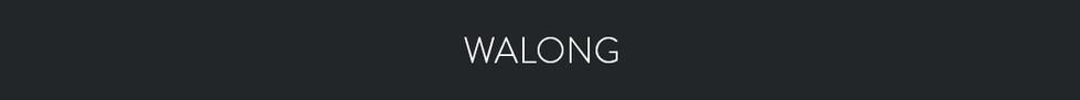 WALONG
