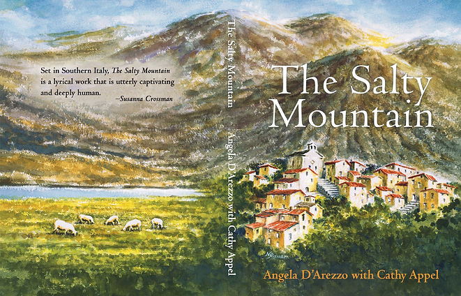 The Salty Mountain Book cover.jpg