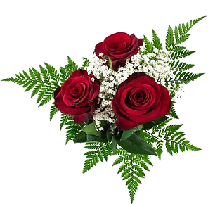Ballerina- 3 roses.png