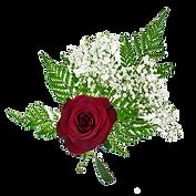 Princess- Single rose.png