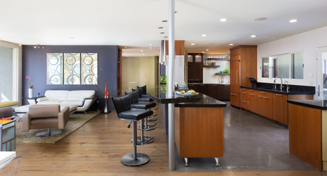Mid-Century Modern Living And Kitchen Space
