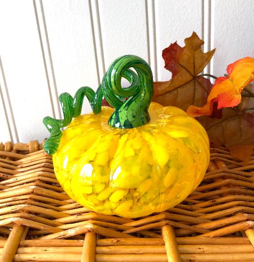 Yellow Squat Pumpkin