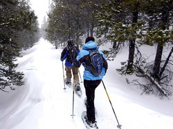 vt-snowshoeing-trails-snowshoe-tours-m1frckhwaniru7vt6tlh69et2fcfn700zhqs2rnbzk