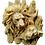 Thumbnail: Lions Mold