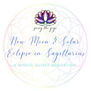 Posey the Yogi - New Moon & Solar Eclips